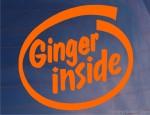 Ginger Inside